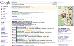 Google local search Places listing